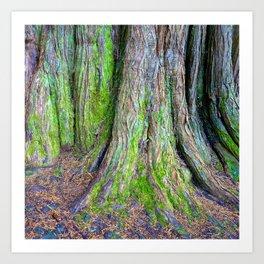 Rainbow Trees II Art Print