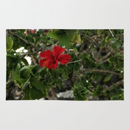 Hibiscus Along the Path Rug