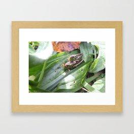 Procreate Framed Art Print