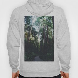 Muir Woods, California II Hoody