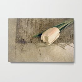THE SIMPLE THINGS #2 Metal Print