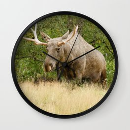 Mr Moose Wall Clock
