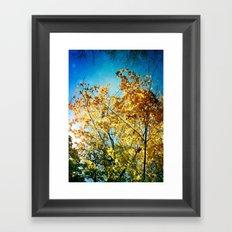Rainbow of leaves Framed Art Print