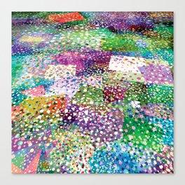 Rainbow Terra Firma Canvas Print