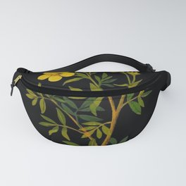 Potentilla Fruticosa Mary Delany Floral Flower Paper Collage Delicate Vintage Black Background Fanny Pack