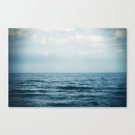 sink or swim. Canvas Print