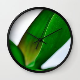 Orchid leaves Wall Clock