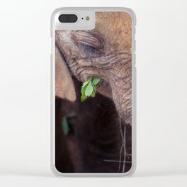 Solemn Moments Clear iPhone Case
