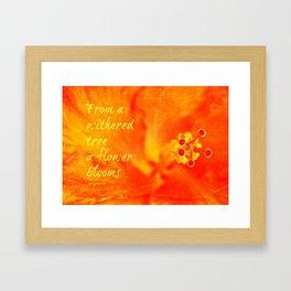Zen Proverb 3 Framed Art Print