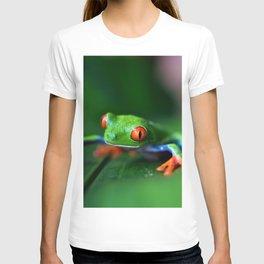 Little Tree Frog (Color) T-shirt