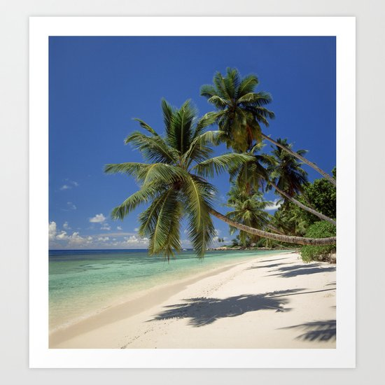 Palm beach, the Seychelles, La Digue island, by michaelhoward