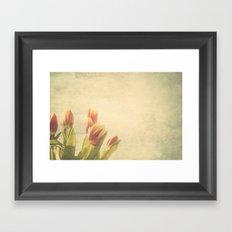Tulipanes. Framed Art Print