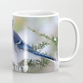 Look Skyward Blue Jay Coffee Mug
