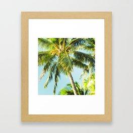 Maui Paradise Palms Framed Art Print