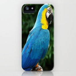 Parrot Trooper iPhone Case