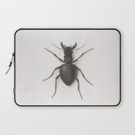 Pierre Joseph Redouté - A Stag Beetle Laptop Sleeve