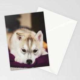 husky puppy. Stationery Cards