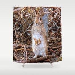 Honey Bunny Shower Curtain