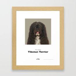 Project 100 Dogs JarJar the Tibetan Terrier Framed Art Print