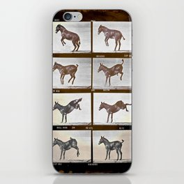 Muybridge Donkey  iPhone Skin