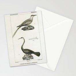 094 paille en queue ou Phaeton (Fr) Anhinga (Fr)9 Stationery Cards