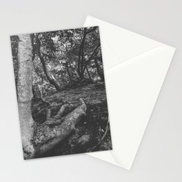 Tree Foot Stationery Cards