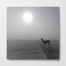 Llama in the mountains of Peru Metal Print