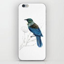 Tui, New Zealand native bird iPhone Skin