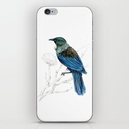 Tui, New Zealand native bird iPhone Skin