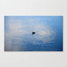 perfect circle Canvas Print