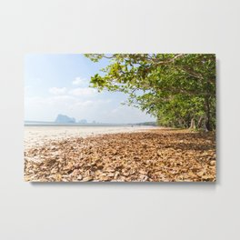 Leaves on the beach at Pak Meng, Trang Province, Thailand Metal Print