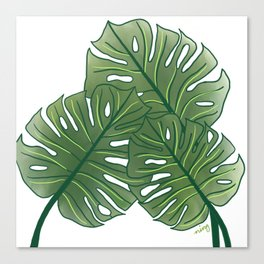 Large Monstera Leaf in Moss Green Canvas Print