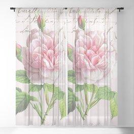 Paris Rose Sheer Curtain
