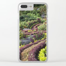 Winding Path Clear iPhone Case