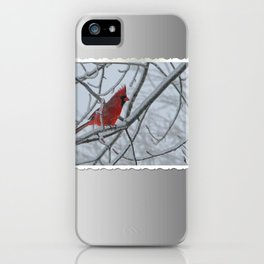 Redbird on Icy Tree Branch iPhone Case
