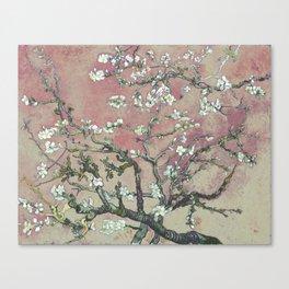 Almond Blossom - Vincent Van Gogh (pink pastel and cream) Canvas Print