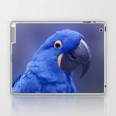 Blue Hyacinth Macaw - Anodorhynchus hyacinthinus - Puohokamoa Hoolawa Maui Hawaii Laptop & iPad Skin