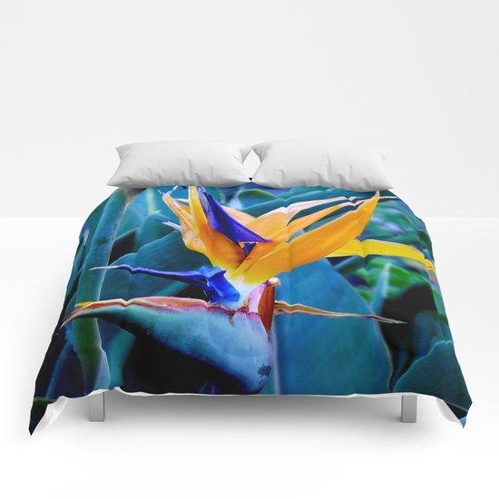 Strelitzia Comforters