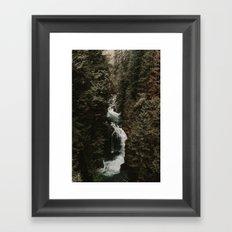Forest Fall Framed Art Print