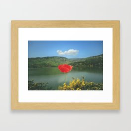 Flower Photography by Aziz Acharki Framed Art Print