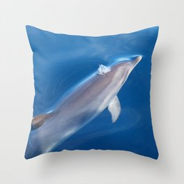 Dolphin and dreams Throw Pillow