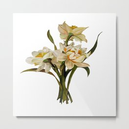 Double Narcissi Bouquet Vector Metal Print