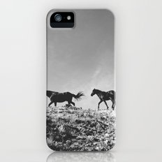 Pryor Mountain Wild Mustangs iPhone (5, 5s) Slim Case