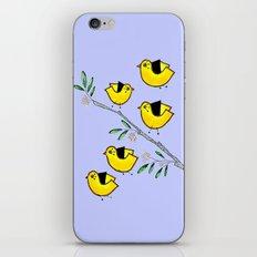 5 lil'yellow birds iPhone & iPod Skin