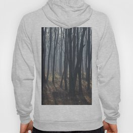Fog Autumn forest Hoody