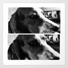 Beagle Boys Art Print