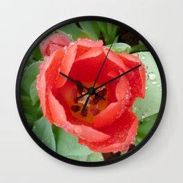 Flower - Tulip Wall Clock