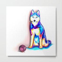 Husky with Paint Metal Print