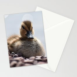 Duckling Stationery Cards