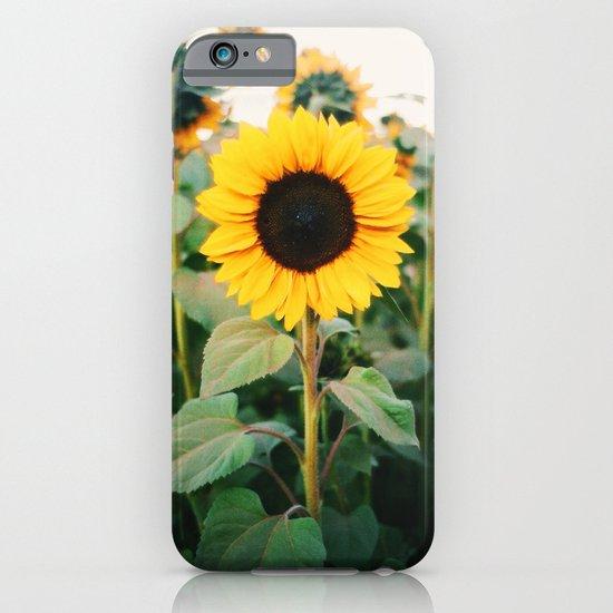 Sunny iPhone & iPod Case